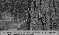 Strelski periskop