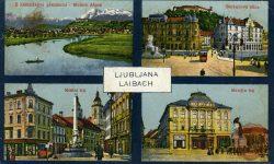 Ljubljana_Mestni_trg_Stritarjeva_ulica_Marijin_trg_Kamniške_Alpe_Ljubljanski_Grad_1917