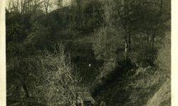 Pogled na grajski stolp