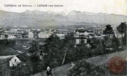 Golovec