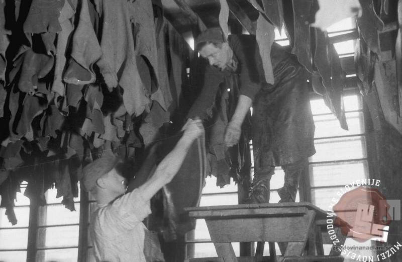 Usnjarna Indus, 11. januar 1946. Foto Peter Fajfar. Hrani Muzej novejše zgodovine Slovenije.