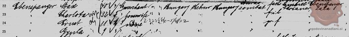 Seznam potnikov v ZDA, med katerimi je tudi Gyula Ebenspanger. Foto: Dejan Süč.