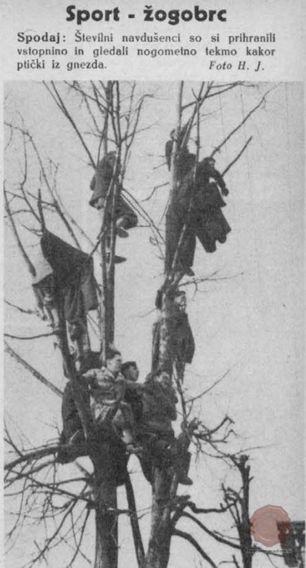 Teden v slikah, let. 1, št. 11, 1937